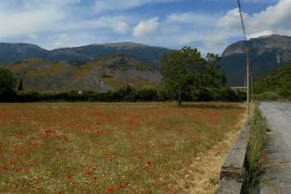 Road to Morano Calabro